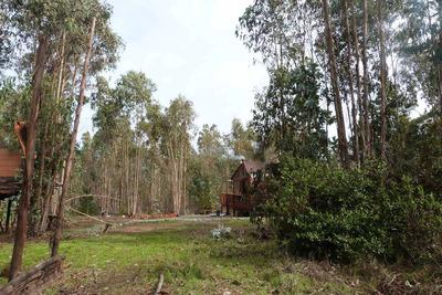 Arriendo Cabaña El Quisco. Hermosa Parcela El Totoral